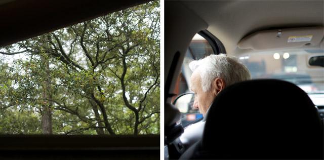 trees-and-grandpa