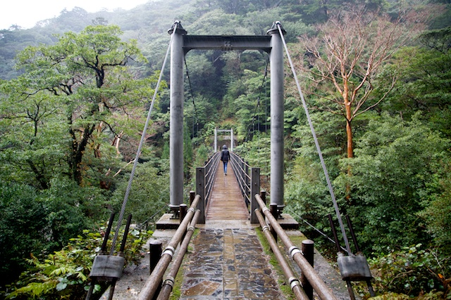 yakushima bridge