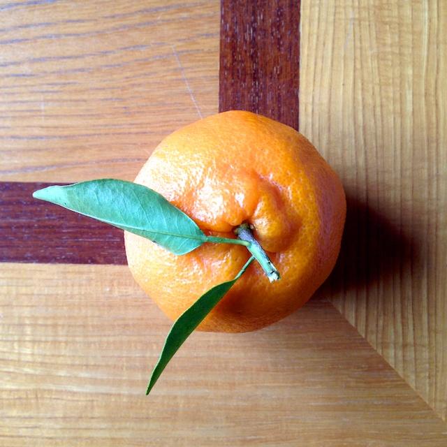 Japanese citrus