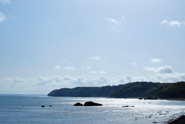 tanegashima shore