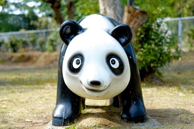 tanegashima panda
